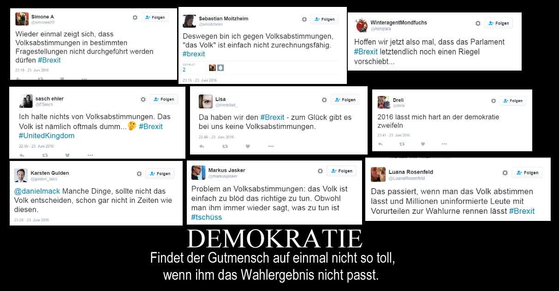 gutmensch_demokratie